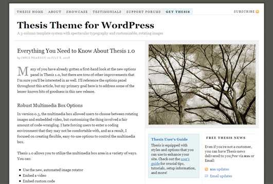 thesis wordpress theme from diythemes