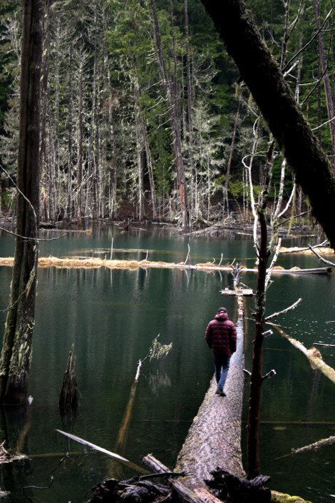 Tyler walking out on lake log
